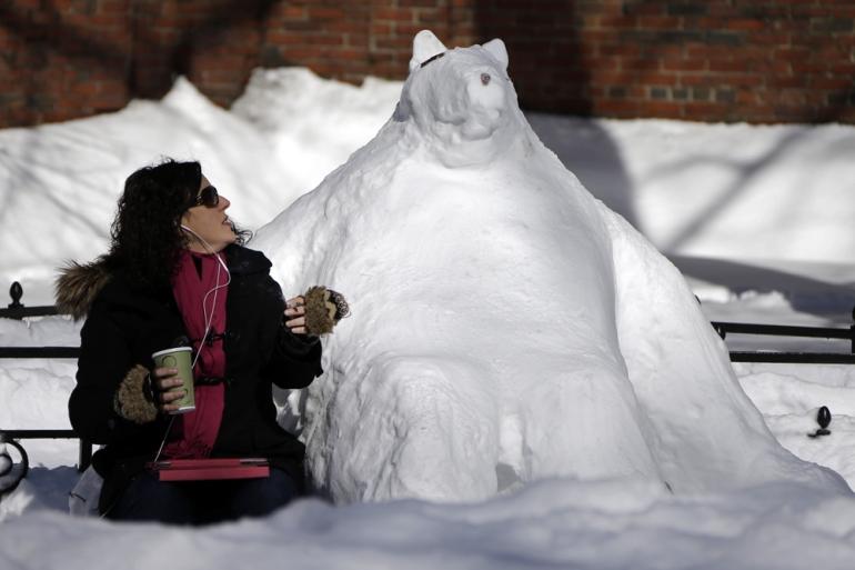 0210_snowbear