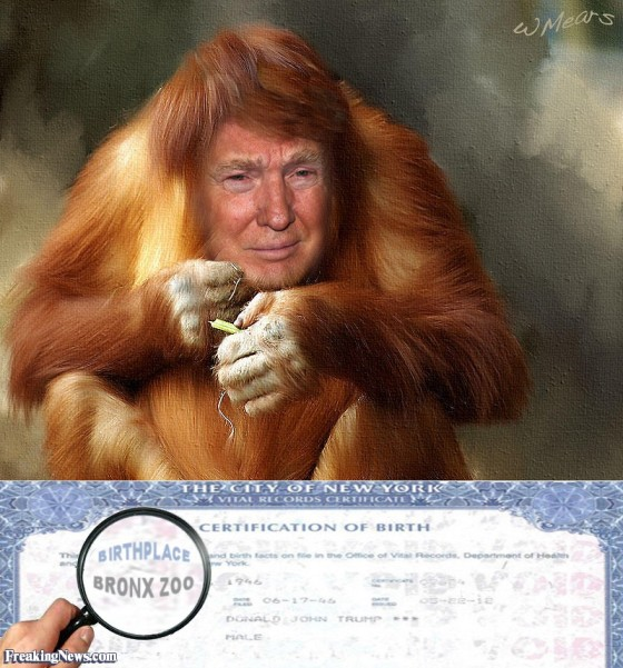 Donald-Trump-s-Birth-Certificate--105614