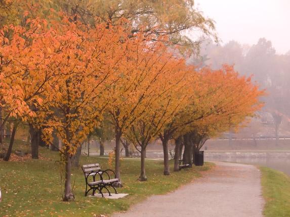 Brookline Reservoir (41 of 89)