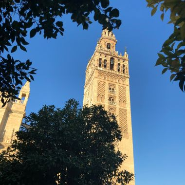 Sevilla Cathedral.